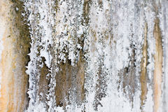 老白色墙壁和真菌用不同的树荫 库存图片