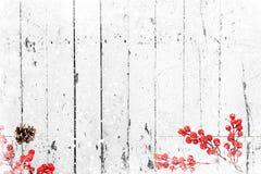 老白色木纹理用雪和霍莉莓果 库存照片