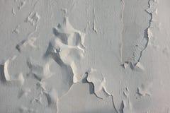 老白色油漆的纹理在早晨光的 库存图片