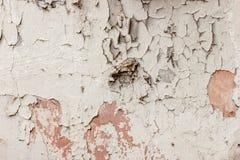 老白色褴褛墙壁纹理  库存图片