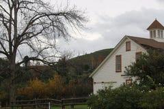 老白色谷仓和橙色树丛 图库摄影