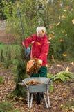 更老的人,当工作在庭院里时 库存照片