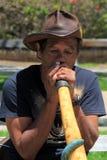 更老的绅士坐长凳在公园,弹奏乐器,圣地亚哥,加利福尼亚, 2016年 免版税库存图片