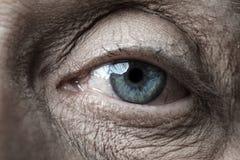 老眼睛 免版税图库摄影