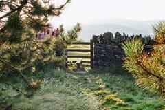 老石块墙在威尔士乡下,山在背景中 库存照片