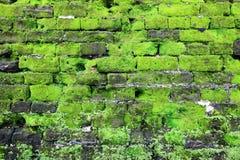 有绿色青苔的老石墙 免版税图库摄影