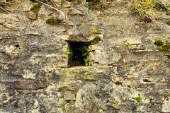 老石墙 图库摄影
