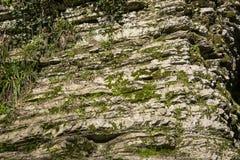 老石头,岩石 背景 是大厦以后的山山风景 免版税库存照片