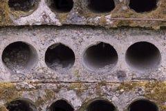 老石bulding的块无缝的照片纹理与干燥青苔的 图库摄影