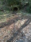 老矿在森林里 免版税库存图片