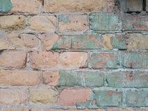 老砖城市墙壁、桃红色砖和嫩绿色的被洒的膏药,现代背景纹理,文本的自由空间 免版税库存照片