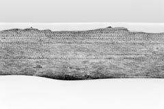 老砖墙和雪在黑白 免版税库存照片