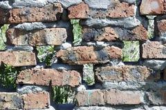 老砖墙纹理特写镜头背景 免版税库存图片