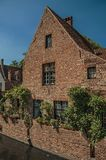老砖房子和绿叶在运河` s在一个晴天渐近在布鲁日 免版税库存图片