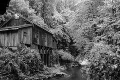 老磨房在森林里 免版税库存图片