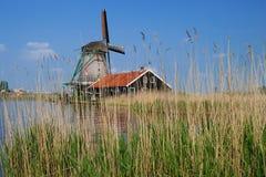 老磨房在荷兰 免版税库存图片