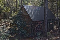 老磨房在HDR的森林 免版税库存图片