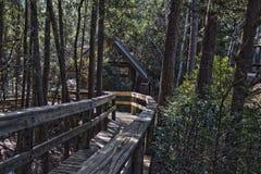 老磨房在HDR的森林 库存照片