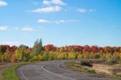 老秋天路 秋天风景在清楚的蓝天下 图库摄影