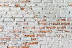 老空白砖墙 免版税库存照片