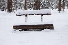 老空的长木凳在积雪的公园 背景蓝色雪花白色冬天 户外 免版税图库摄影