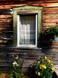 老窗口、鞋带和花 免版税库存照片