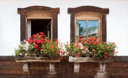 老窗口和花在一个老大厦 免版税库存图片