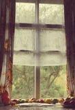 老窗口的葡萄酒foto 在窗口附近的蕃茄谎言 免版税库存图片