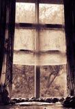 老窗口的被定调子的foto 在窗口附近的蕃茄谎言 库存图片