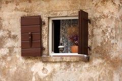 老窗口 图库摄影