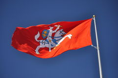 老立陶宛旗子 库存照片