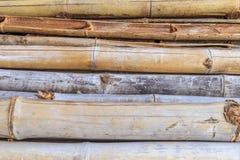 老竹子和棍子竹子 免版税库存照片