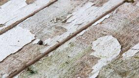 老篱芭上与剥落白色的油漆  免版税图库摄影