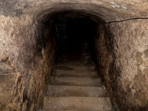 老粗砺的砖地下室入口台阶遮蔽VA 免版税图库摄影