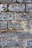 老红砖墙壁样式纹理背景 免版税库存照片