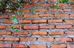 老红砖墙壁纹理背景难看的东西墙纸 免版税库存图片
