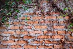 老红砖墙壁纹理背景难看的东西墙纸 库存图片