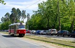 老红色电车在路轨乘坐在森林里 免版税库存图片