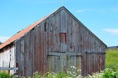 老红色谷仓在夏天 库存照片