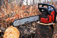 老红色锯和被切开的木柴 免版税库存照片