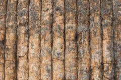 老纹理木头 库存图片