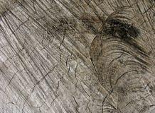 老纹理木头 免版税库存图片