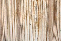 老纹理木头 免版税图库摄影