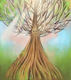 老结构树 免版税图库摄影
