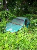 老绿色汽车在灌木倾销了 图库摄影
