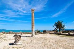老罗马帝国废墟在迦太基-突尼斯 库存照片