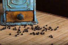 老胡椒研磨机和peppercons在地毯 库存照片