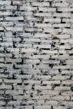 老脏的白色砖墙垂直的射击有黑土的 库存照片