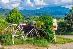 老自行车和花在外部装饰的庭院里 库存图片