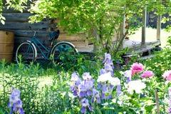 老自行车在墙壁附近站立 免版税库存图片